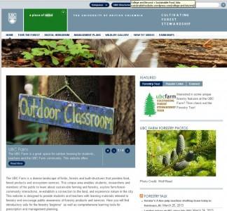 Cultivating Forest Stewardship
